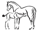 mare-and-foal-.jpg